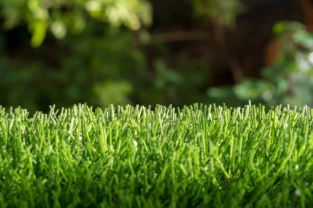 powder-springs-ga-lawn-care-services-copy-scaled.jpg